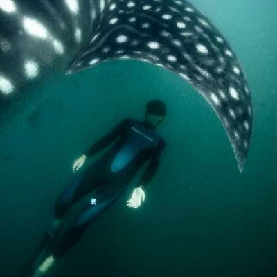 Freediving with Guillaume Néry