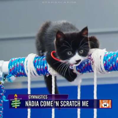 Hallmark Channel's 'Kitten Summer Games' with Nadia Come 'N Scratch Me