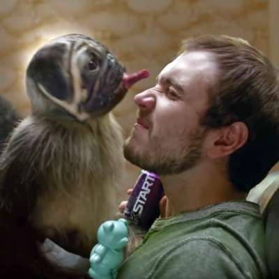 Puppymonkeybaby stars in 2016 Super Bowl ad